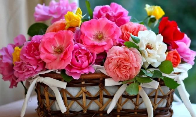 Цветы мне нежно улыбались