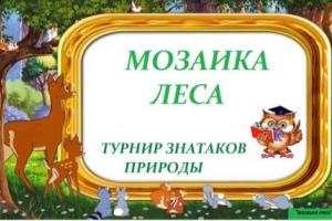 Мозаика леса
