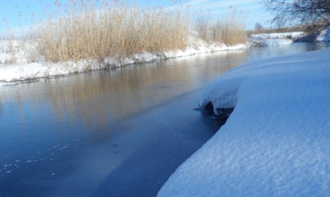 «Природа зимой»
