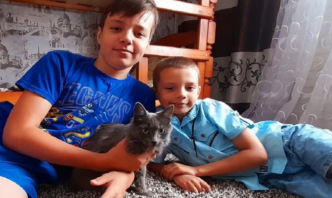 Юдановский ДК 8 августа 2020 года предлагает Вам посмотреть фильм о кошках и их хозяевах.
