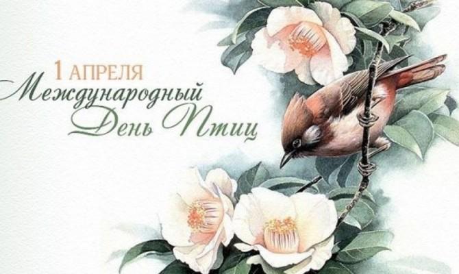 Международный день птиц – праздник единения человека с природой