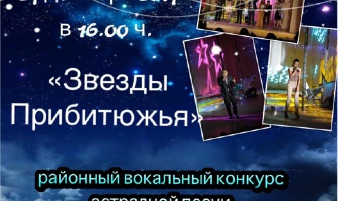 Финал районного  вокального конкурса эстрадной песни