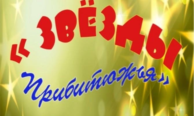 XVII районный вокальный конкурсе  «Звезды Прибитюжья» - 2019