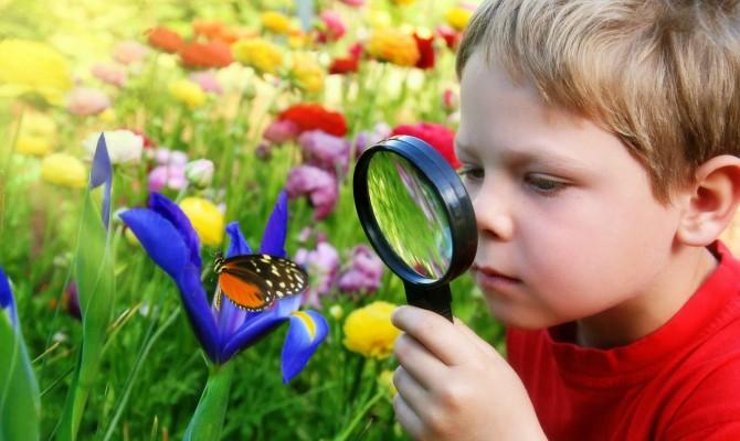 «Экология и мы»