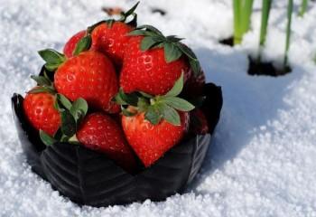 Бобровская ягодка