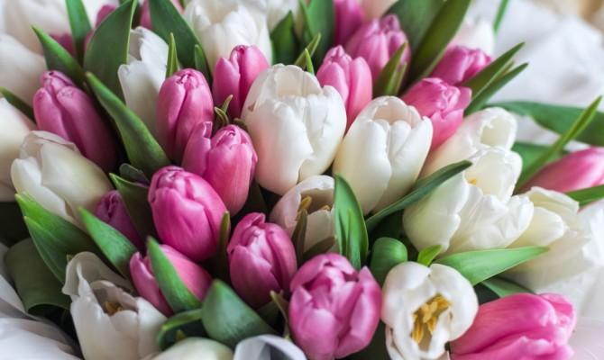 «Дарите женщинам цветы»
